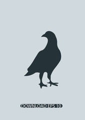 Bird icon, Vector