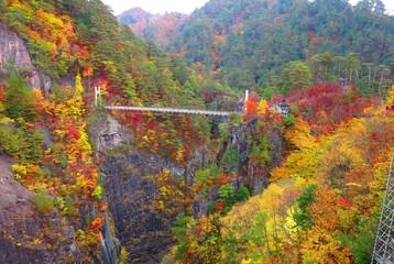 秋の瀬戸合峡