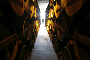 Oak barrels are stored in a cellar where cognac is aged at the distillery of Courvoisier house in Cognac, southwestern France