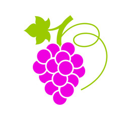 Ripe grape bunch vector icon