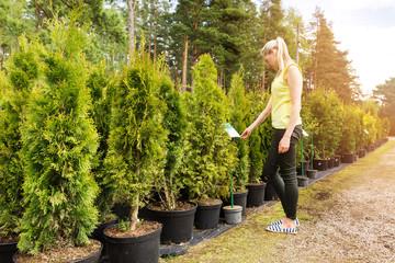 woman choosing thuja tree at outdoor plant nursery Wall mural