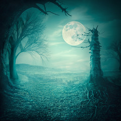 Spooky woods with moonligt as halloween backdrop