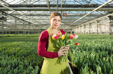 Woman holding bunch of tulips in greenhouse