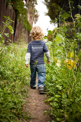 Boy walking on dirt track rear view