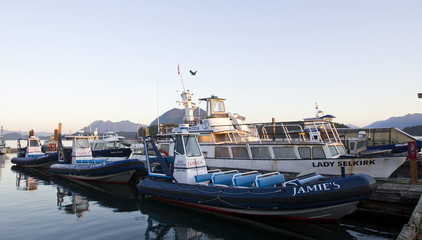 A tour boat sits idle at Jamie's Whale Watching Station in Tofino