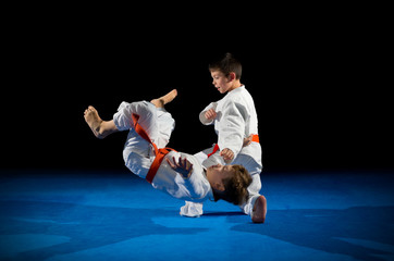 Little boys martial arts fighters