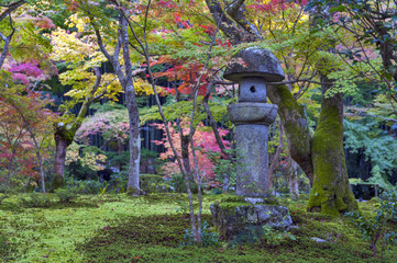 Kasuga doro or stone lantern in Japanese maple garden during autumn at Enkoji temple, Kyoto, Japan
