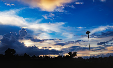 Tropical colorful dramatic sunset with cloudy sky. Bright afterglow and the silhouette of palms and trees. Tropical vacation background