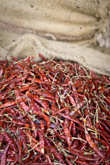 Chilli in Nepal im Sack