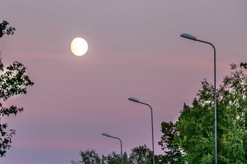 Moon on a pink dusk sky.