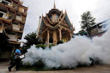 A city worker fumigates the area to control the spread of mosquitoes at a temple in Bangkok