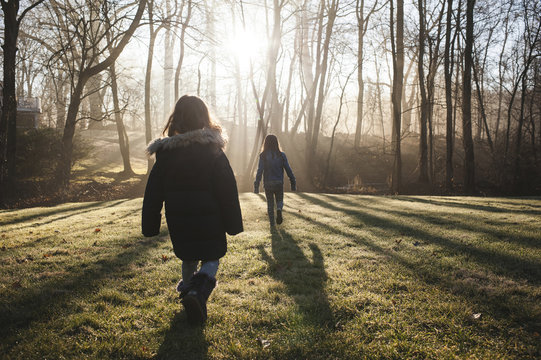 Rear view of sisters walking on grassy field in forest during sunny day