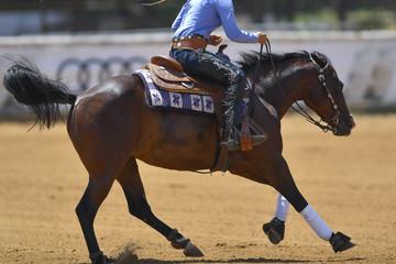 The rider gallops on horseback on the sandy field