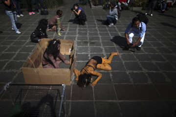 Photographers take pictures of demonstrators from the AnimaNaturalis animal rights group taking part in a demonstration against the buying and selling of pets on Three Kings Day, in Mexico City