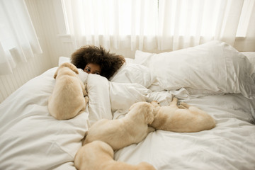 Woman lying in bed with puppies.