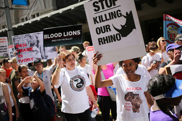 Animal rights activists demonstrate outside the Sandton convention center, a venue hosting the 17th meeting of the U.N.'s Convention on International Trade in Endangered Species (CITES)  in Johannesburg