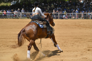 A rear view of a rider gallops on horseback on the sandy field