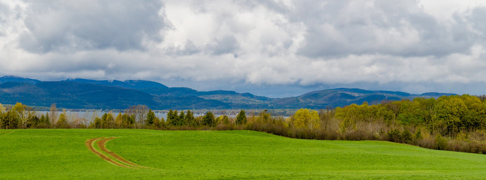 banner picture of farm meadow with tractor tracks curving across field  looking to Lake Champlain, Vermont , across to mountains in New York State