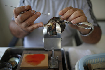 A man places a tiny bead inside an oyster at RAK's oyster farm off the coast of Ras Al Kaimah, one of the seven emirates that make up the United Arab Emirates