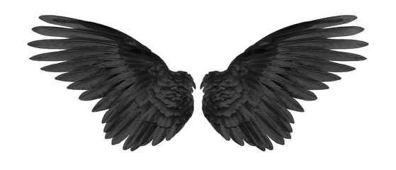 black wings on white background Wall mural