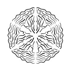 Calligraphic elements for different design