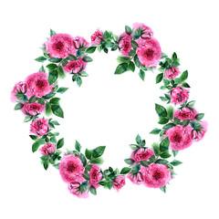Rose flower wreath. Floral circle border. Watercolor frame