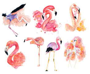Poster Flamingo watercolor pink flamingos