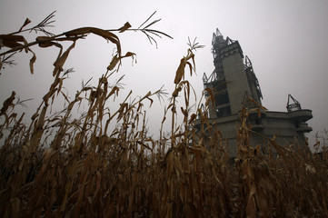Corn grows in a field next to an abandoned building that was to be part of an amusement park called 'Wonderland', on the outskirts of Beijing