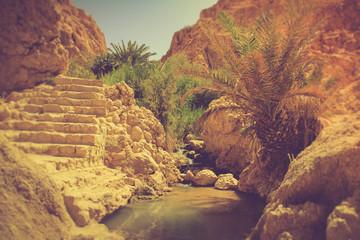 Canyons - Oasis of Nefta, Chebika, Sahara. Tunisia.
