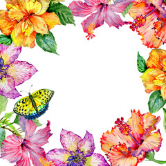 Wildflower hibiscus flower frame in a watercolor style isolated.