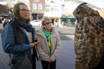 Charmaine Dennis and her son Jesper Dennis-Mynster look at Pumpkin the owl on Main Street at the Sundance Film Festival in Park City, Utah