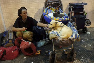 A homeless woman gives water to her dog, which is in a baby pram with her cats, along a street in Sao Paulo