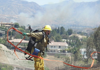 A firefighter lays out a hose line at a wildfire on a hillside in an upscale neighborhood in Los Angeles, California