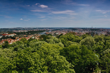 view to Vltava river in Prague with green trees in foreground from Petrinska rozhledna tower in sping Czech republic