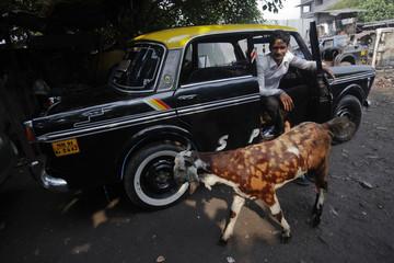 Goat walks past a mechanic sitting inside a Premier Padmini taxi before it's scrapped at a scrap yard in Mumbai