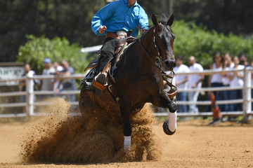 The frontview of a rider in cowboy chaps and boots sliding the horse in the sand