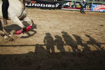 The shadows of competitors are cast on the ground during the sixth Cowgirl World Championship in Villavicencio