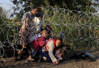 Syrian migrants cross under a fence as they enter Hungary at the border with Serbia, near Roszke