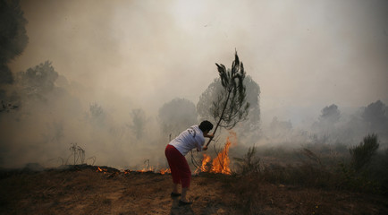 The owner of a farm fights against the active front of a forest fire near Mengualde