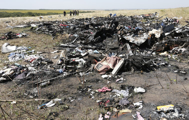 Members of a group of international experts inspect the site where the downed Malaysia Airlines flight MH17 crashed, near the village of Hrabove