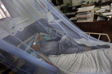 A patient suffering from dengue fever lies on a bed covered by a mosquito net at San Felipe hospital in Tegucigalpa