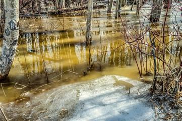 Spring snow melt