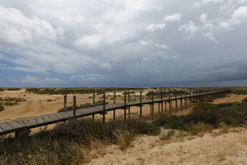 Pathway to the beach on Culatra Island in Ria Formosa, Portugal