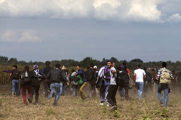 Migrants run from police as they escape from a collection point in Roszke village
