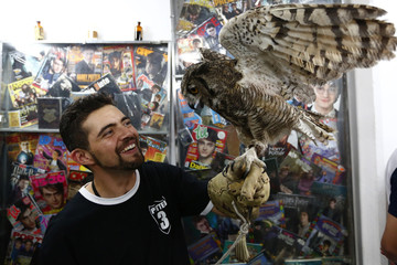 Fan of the Harry Potter franchise, Menahem Asher Silva Vargas, smiles while holding an owl during an exhibition of the Guinness World Record collection of Harry Potter memorabilia at the Mexican Museum of Antique Toys in Mexico City