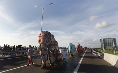 Elephants with their mahouts travel on the newly built highway to the Bandaranaike International Airport in Katunyake