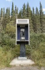 Wildlife payphone