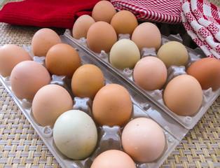 Freshly baked chicken eggs.