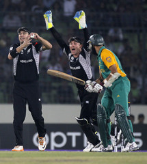 New Zealand's Vettori catches out South Africa's Amla after the ball bounced up from the foot of McCullum during their Cricket World Cup quarter-final match in Dhaka