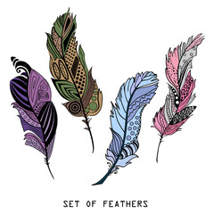 Feathers. Design Zentangle. Hand drawn feathers with abstract patterns on isolation background. Colored set. Zen art